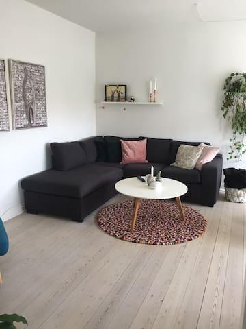 Lækker lejlighed i centrum af Odense, tæt på havn