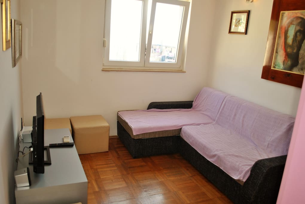leaving room and sofa bed (draw sofa) for 2 persoms