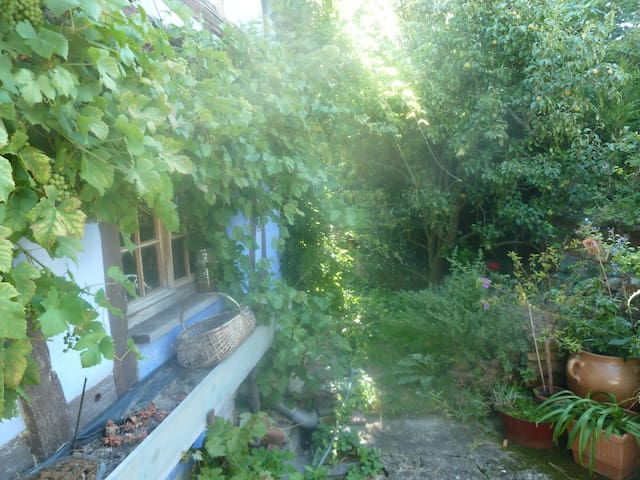 Logement dans une maison alsacienne - Donnenheim - Casa