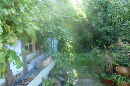 Logement dans une maison alsacienne - Donnenheim - 一軒家