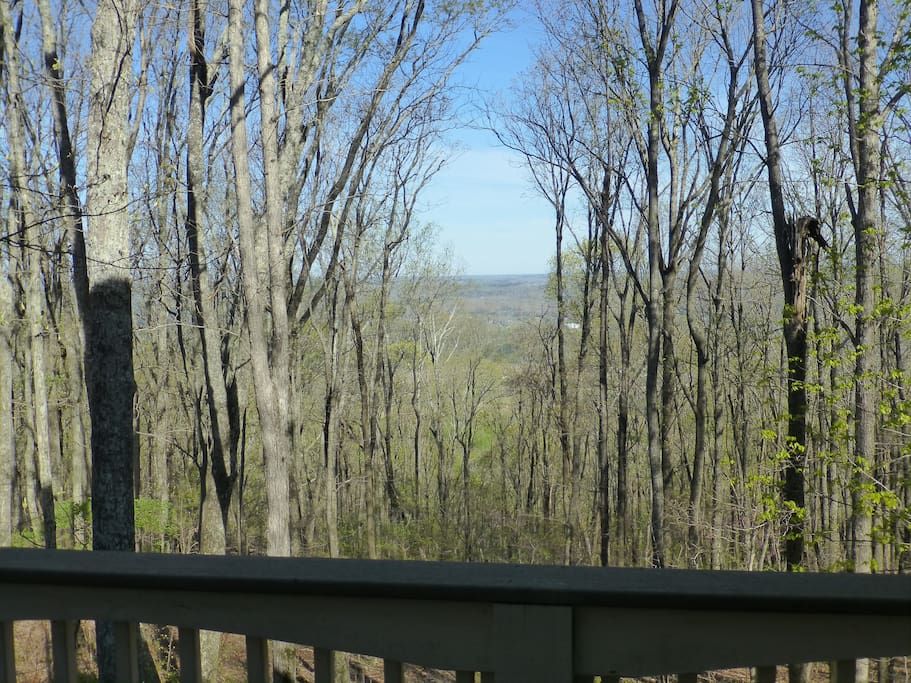 Overlook from back porch