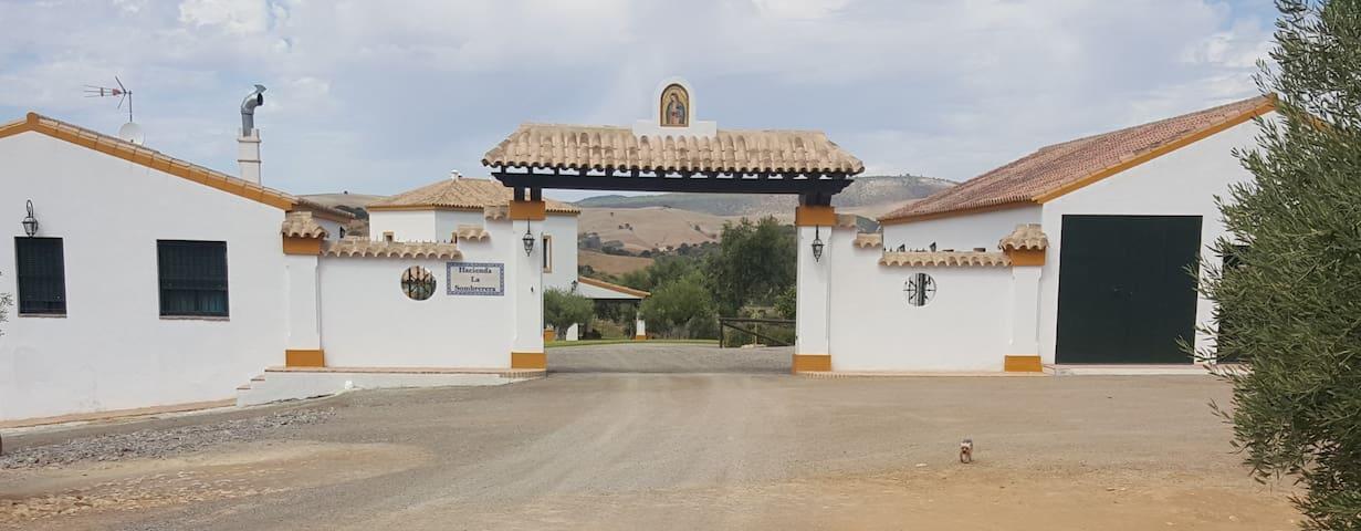Magnifico Cortijo en Puerto Serrano - Puerto Serrano - Villa