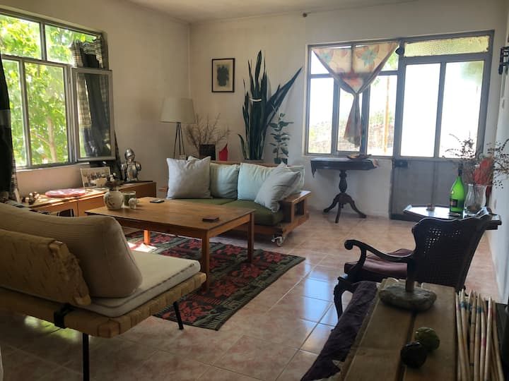 unique environment comfortable and peaceful stay