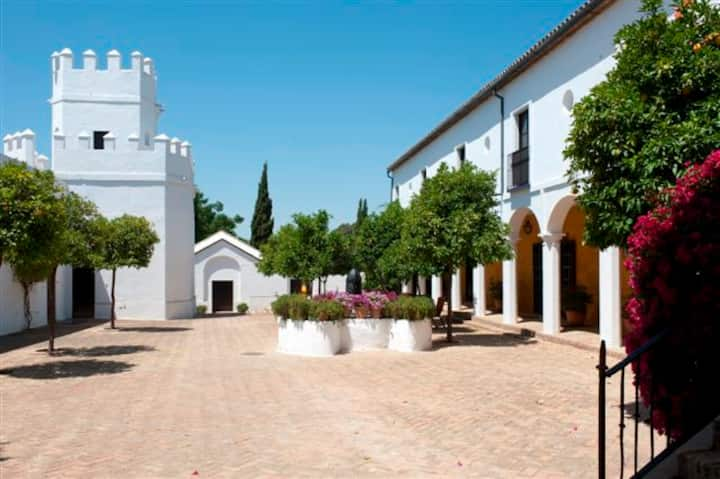 Superior Suite in Cortijo of 13th Century.