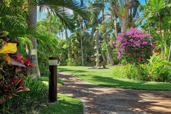 Welcome to Your Hawaiian Oasis!