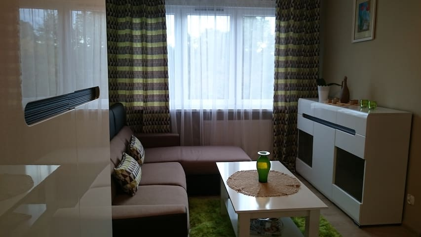 apartament 'Blysk i Blask' - Kłodzko - Appartement