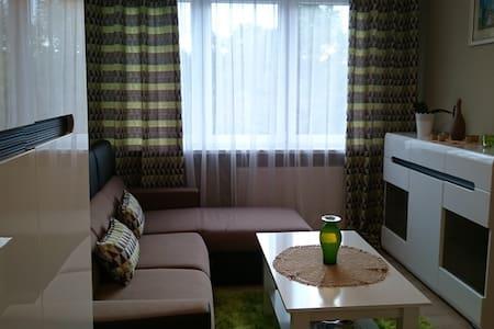 apartament 'Blysk i Blask' - Kłodzko - Wohnung