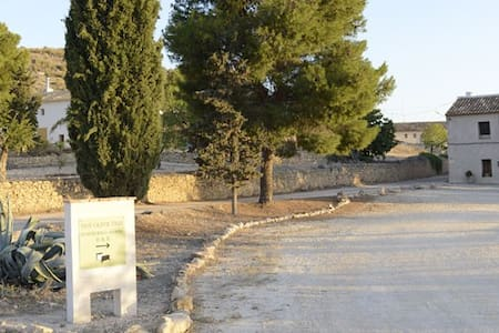 The Olive Tree Country Guest House