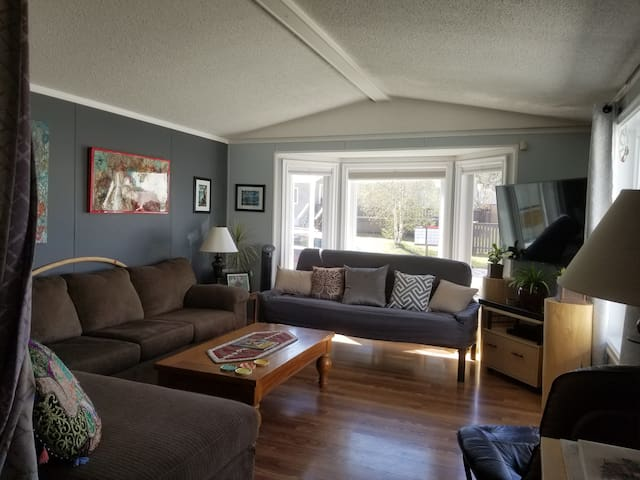 Living room is in the front of the home with a Smart TV, Chromecast, DVD player with DVDs, and Telus Optiks.