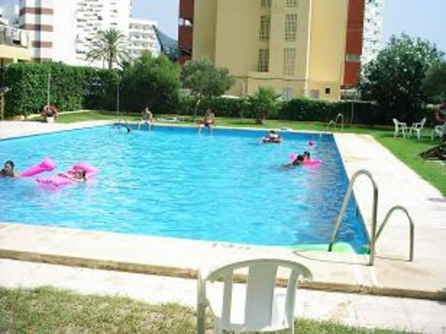 Zwembad July tot september