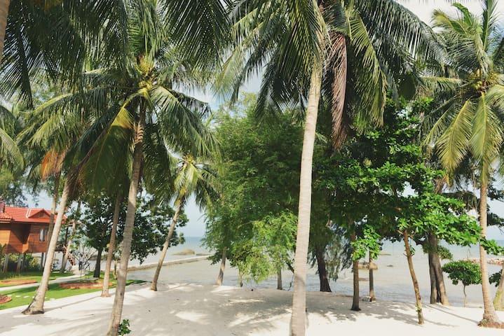 Cay Sao Beach Bungalow with Garden View