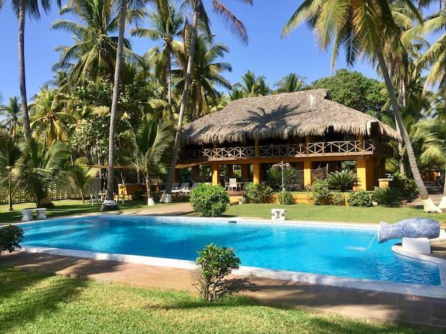Lush tropical paradise on the beach