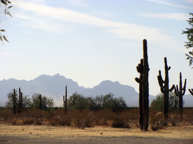 Desert View RV space