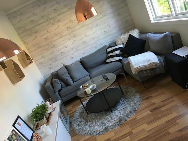 Fin leilighet sentralt i Porsgrunn - Porsgrunn