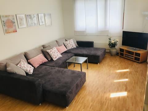 Appartement spacieux et lumineux avec terrasse sur le toit