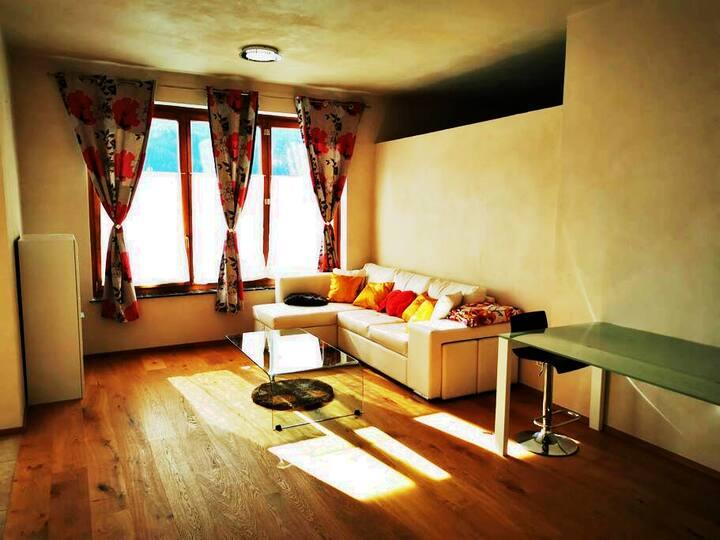 Urlaub im Dreiländereck: modernes 60 m² Apartment