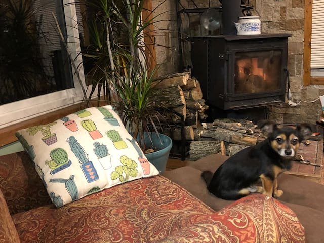 """Fall in Love with our Cozy """"Don't Fall Inn"""" Cabin!"""
