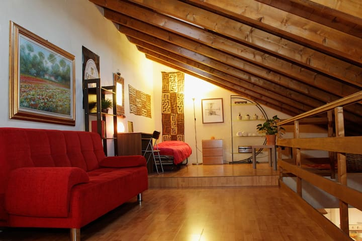 Big Cozy Attic Loft in City Center - Lodi - Huis
