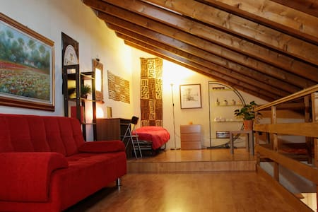 Big Cozy Attic Loft in City Center - Lodi - บ้าน