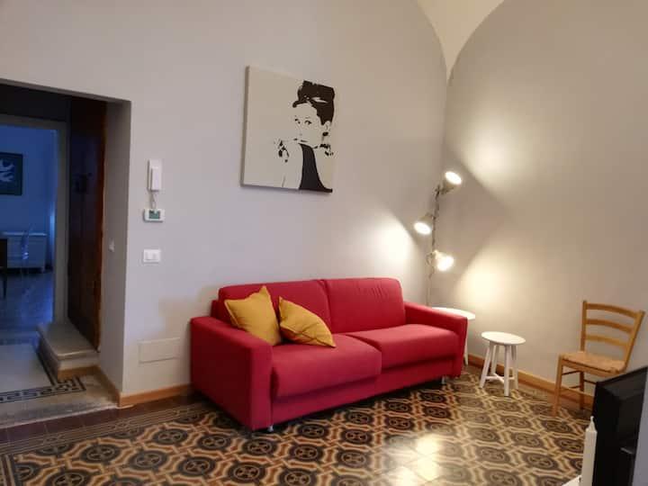 Casa Ridolfi -Una terrazza sui giardini di Pisa