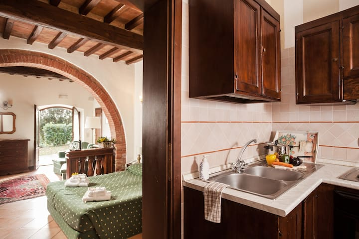 CHARMING STUDIO IN A TUSCAN VILLA - Bivio di San Biagio - Apartment
