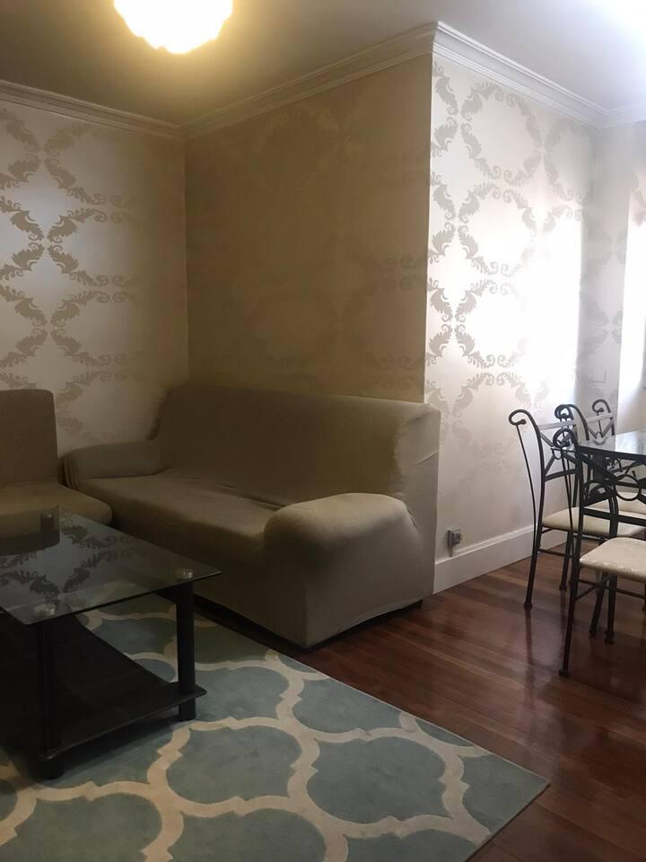 Apartamento Céntrico en León bien acondicionado