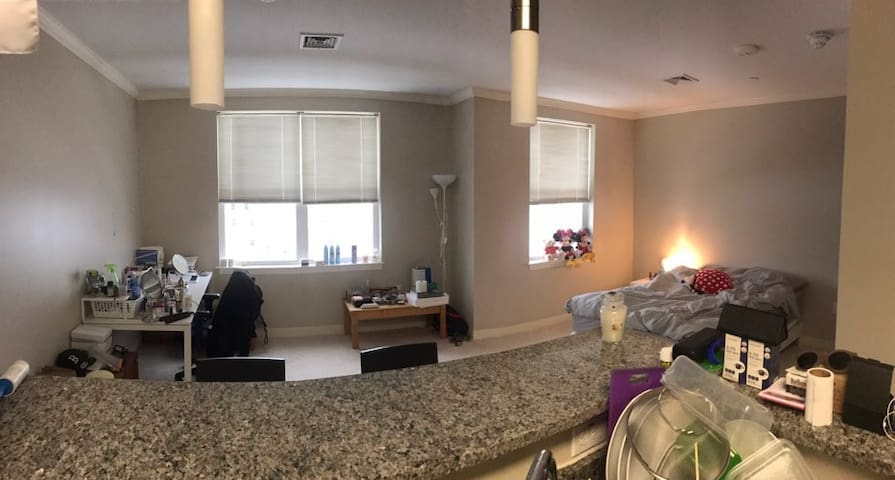 Cozy, luxurious, private studio apartment - Malden - Appartement
