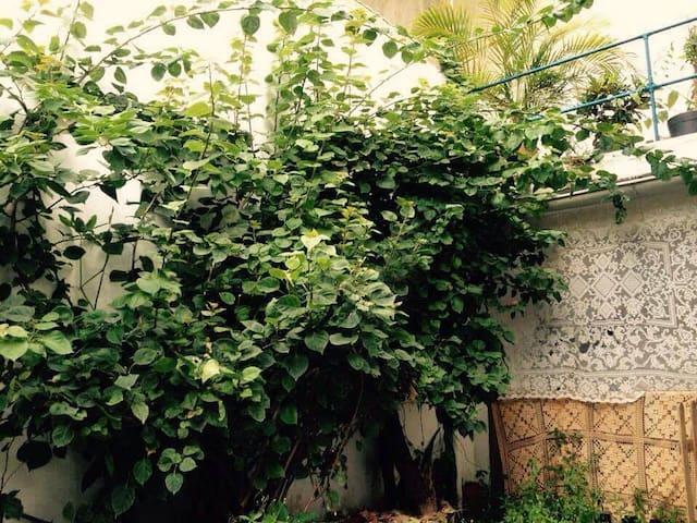 Quarto aconchegante com varanda no Cosme Velho