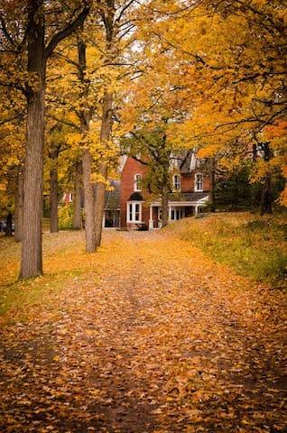 Driveway - Fall View
