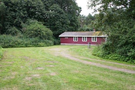 Skovløberhus i  naturskønne omgivelser. - Grenå