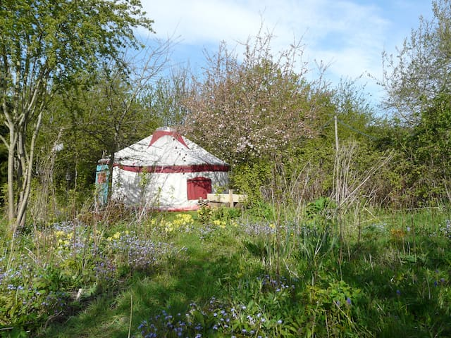 The Yurt at Tithe Farm, North Somercotes. - Church End