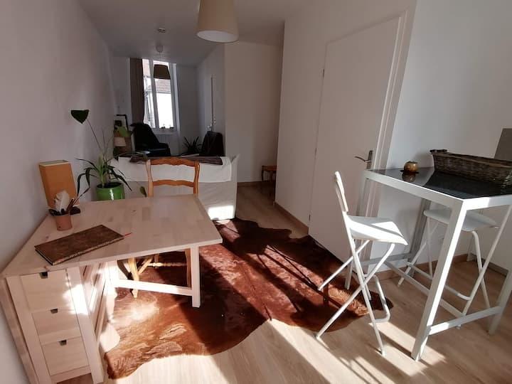 """Appartement """"Le 25"""" à Nuits Saint Georges"""