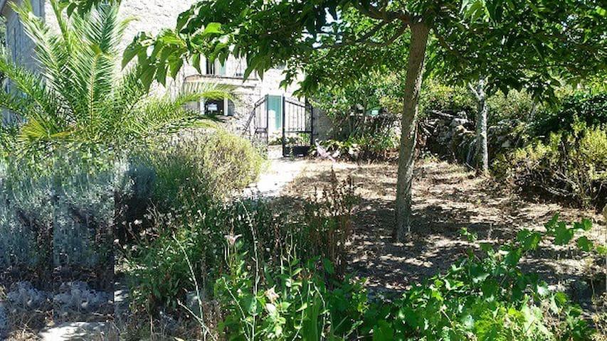 jardin entrée