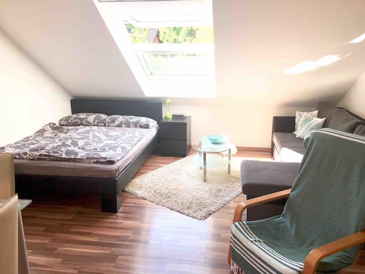 Gemütliches 1Zi.- Appartement in Münster-Nienberge