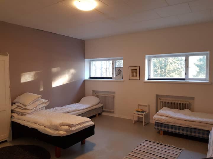Koulukumpu puutyöluokka iso huone useammalle