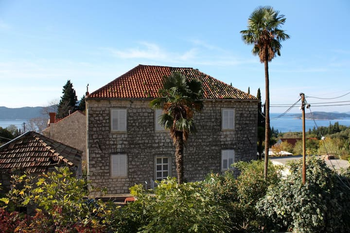 Comfortable and spacious house with terrace Trsteno, Dubrovnik (K-2118)