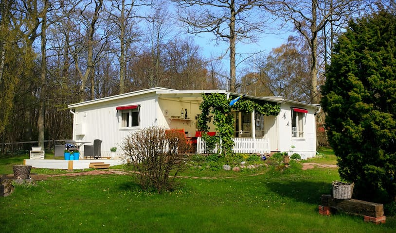 Beautiful house by nature and ocean on west Öland