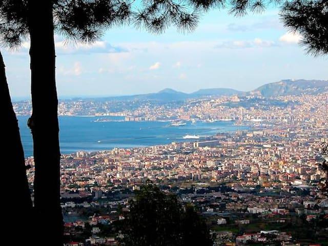 La Murena Vesuvius - Ercolano - อพาร์ทเมนท์