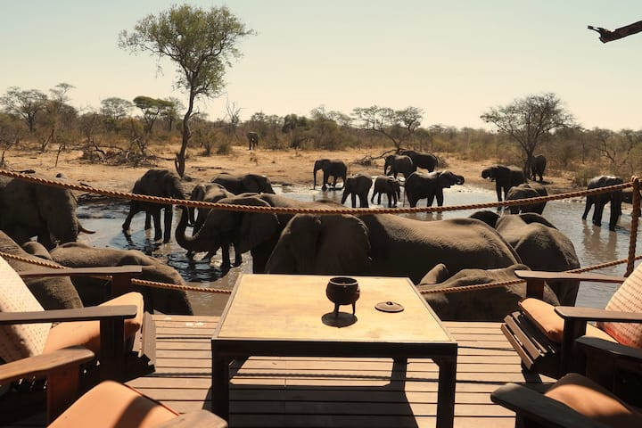South Okavango | Omogolo Bush Lodges