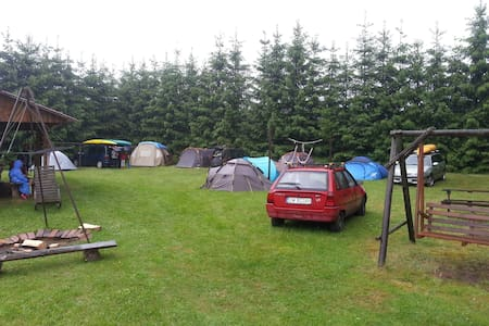 Newland&Camp