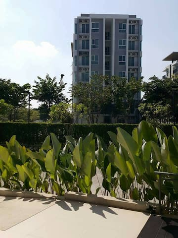 North 4 Condominium By Serene Lake 1 Bed room - Amphoe Mueang Chiang Mai - Apartment