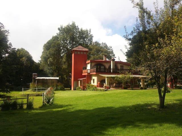 Encantadora casa en el bosque! - Tres Marías  - Talo
