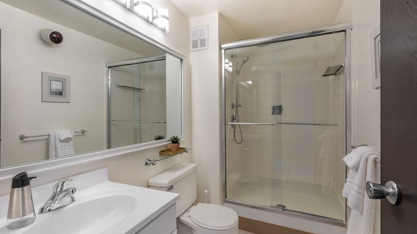 Modern, professionally-cleaned 1BD condo in the best Downtown location