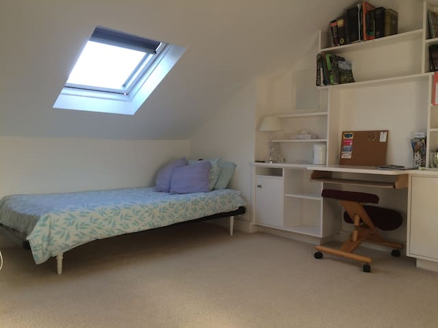 Attic room in central Winchester - Winchester