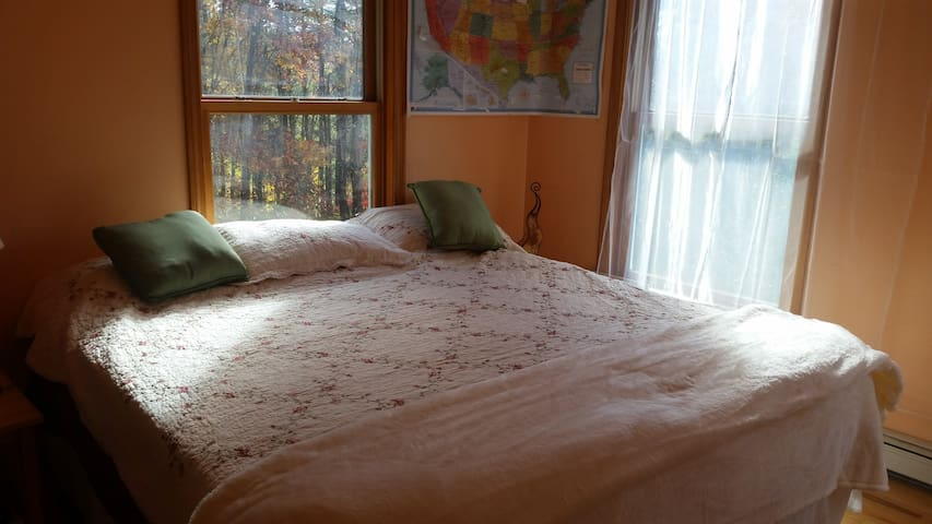 A Sun Filled Room with King Bed - Putney - Dům