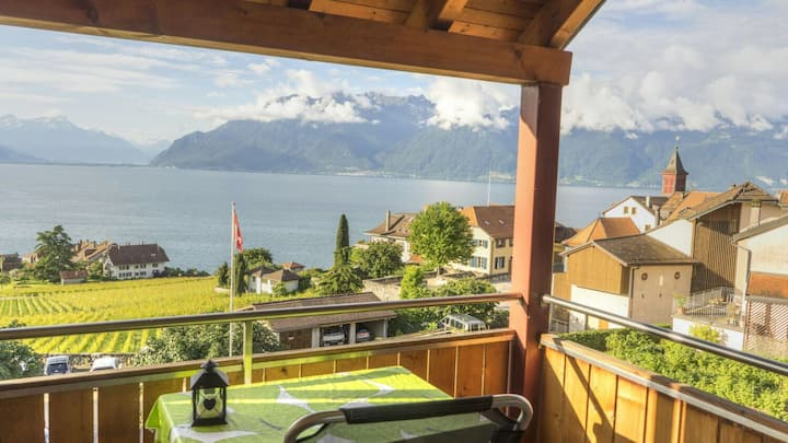 Vevey Montreux Lausanne : Cozy room in the Lavaux
