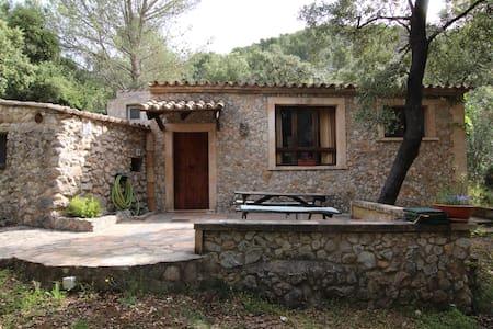 Great House in Puigpunyent - Puigpunyent