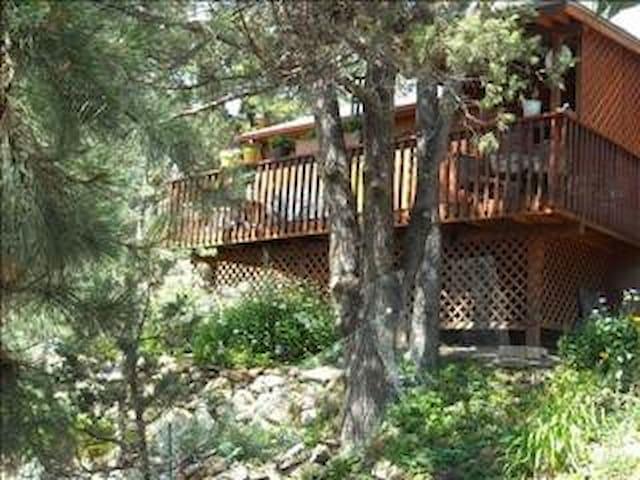 Ruidoso Mountain Cabin - Ruidoso - Sommerhus/hytte