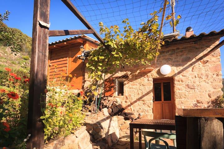 Maisonnette de charme - Cuttoli-Corticchiato - Casa
