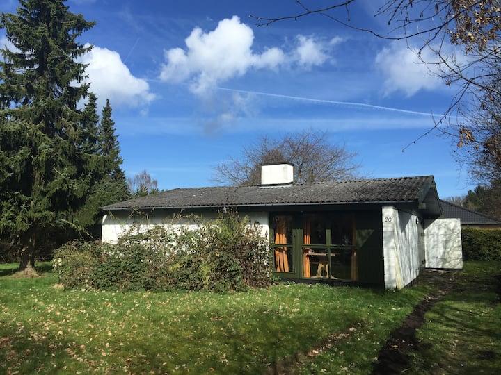Sommerhus med hyggelig atmosfærde i Hornbæk